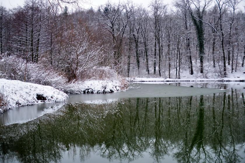 Könnyű és izgalmas téli túrák a Pilistől a Mecsekig: varázslatos vidékeket járhatsz be egy óra alatt