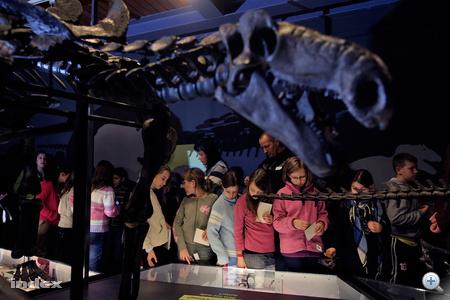 Gyerekek kompenzálják a dinoszauruszok átlagéletkorát