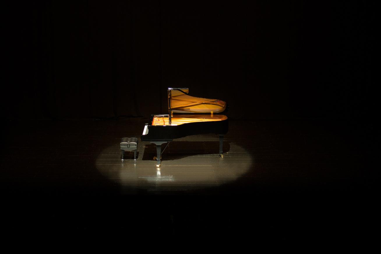 zongora-sotetben