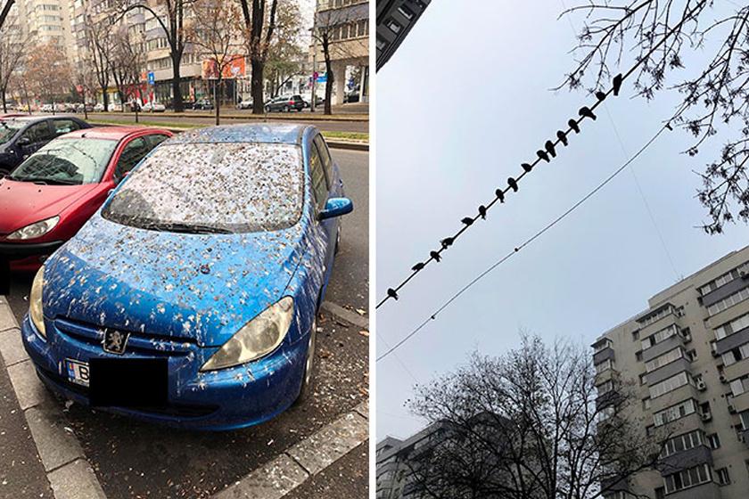 Valaki rossz helyet választott parkoláshoz.