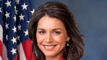 Újabb képviselő jelentette be, hogy indul a 2020-as amerikai elnökválasztáson