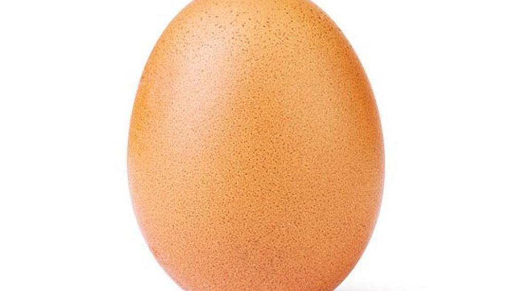 tojás randi