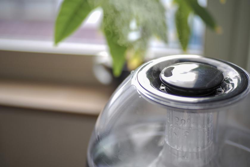 5 tipp, hogyan szabályozd a lakás páratartalmát elektromos berendezés nélkül