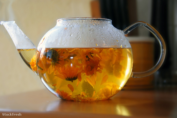 stockfresh 862157 calendula-tea sizeM e55024