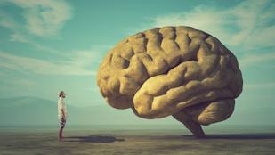 Az emberi agy 6 különleges rejtett képessége