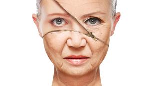 Öregedést lassító vegyületet fedeztek fel