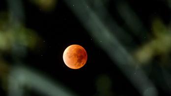Január 21-én lesz az évtized utolsó holdfogyatkozása