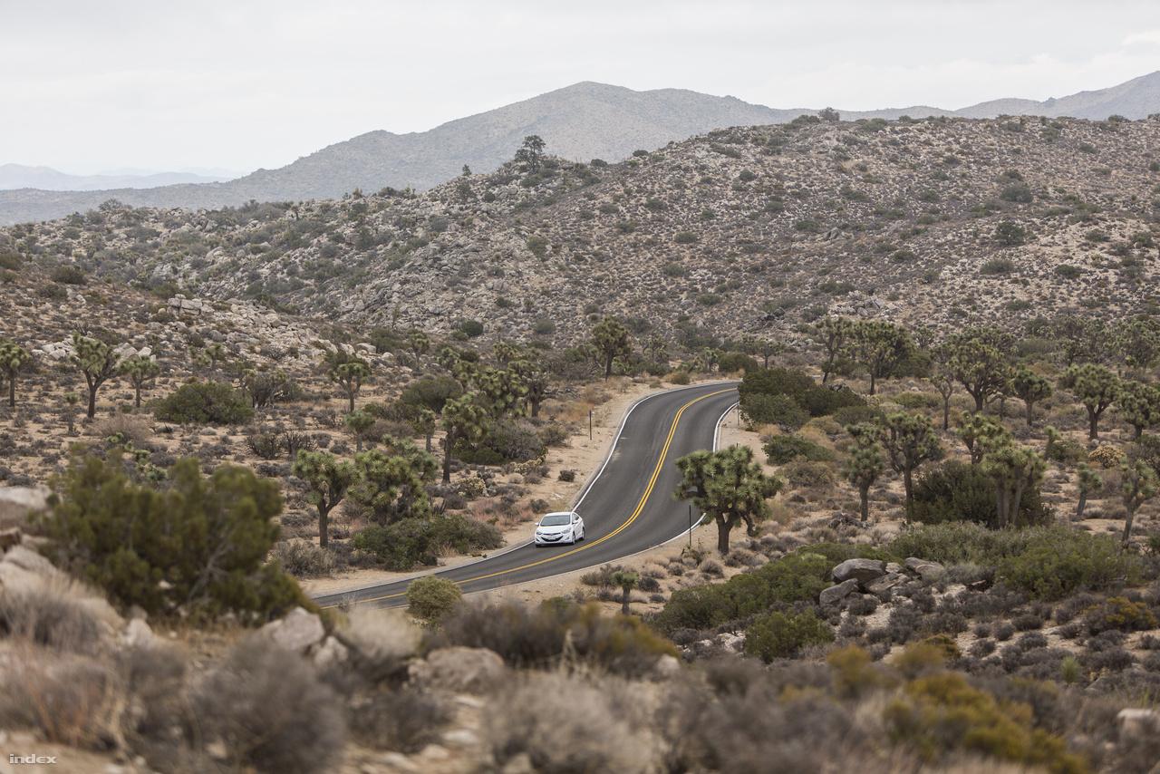 A Kaliforniához tartozó, csaknem kétmillió hektáros Joshua Tree Nemzeti Park a 15. legnagyobb nemzeti park az Egyesült Államokban.