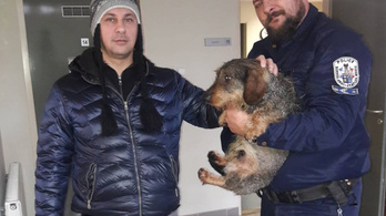 Rendőrök mentettek ki egy tacskót a jeges Tiszából