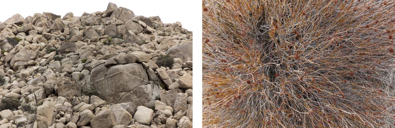"""Sok helyen állnak ilyen halmokban a széttöredezett sziklák, a kisebb darabok felülelét simára csiszolták a felszivárgó talajvízforrások, az esőzések utáni villámáradások, és a sivatagi szelek. A """"kavicshalmok"""" közt a klímára jellemző növényvilág tenyészik, ránézésre száraz halott bokrok, cserjék, de valójában élő, a rövid esős időszakokban kiviruló növények."""