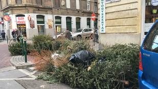 Most a karácsonyfák elszállítása haladta meg kukásaink erejét