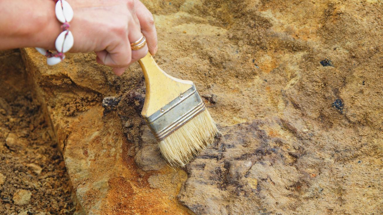 A kutatók sem igazán tudják, mit találtak: 8 titokzatos fosszília, amiről csak találgatnak