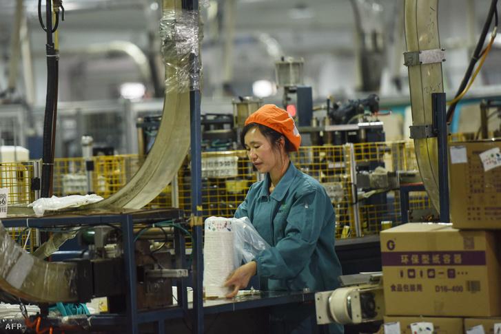 Papír tálakat csomagoló alkalmazott Hangcsou városában, Kínában 2019. január 21-én