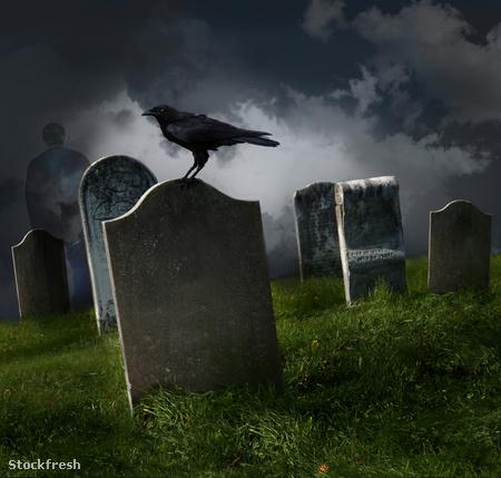 stockfresh 416242 cemetery-with-old-gravestones sizeM