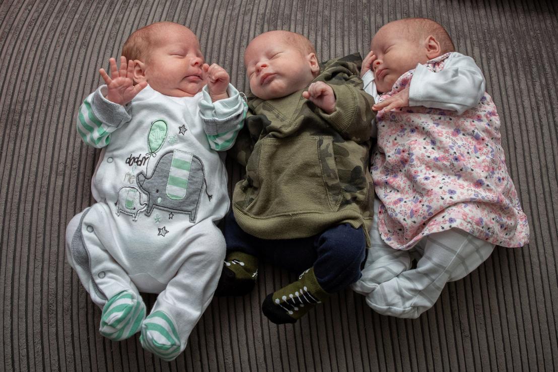tk3s swns diet triplets 06