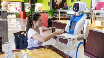 Robothasználat: az uniós lista alján kullognak a magyar cégek