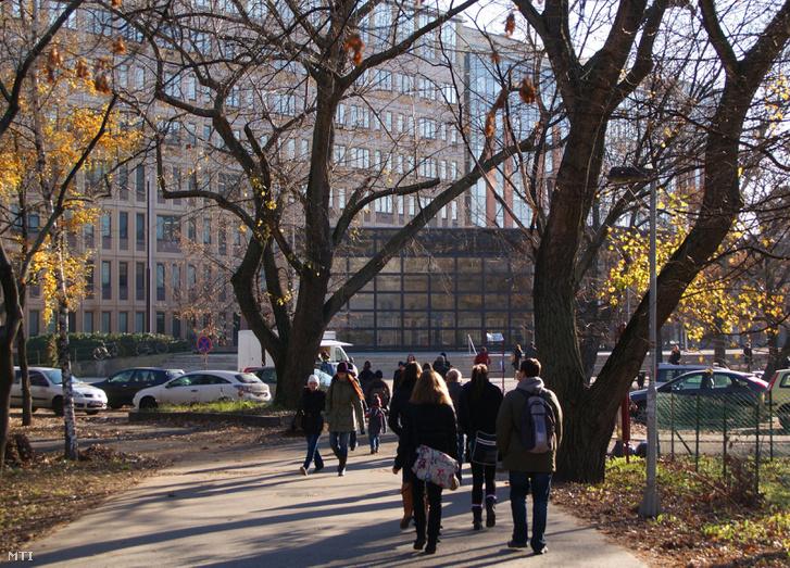 Egyetemista fiatalok tartanak a lágymányosi parkban az Eötvös Lóránd Tudományegyetem Természettudományi Karának épülete felé.
