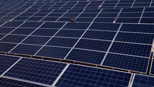 17 napelemparkot létesít egy holland cég, a magyar piac élére törnek