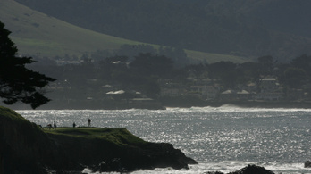 2,5 tonna golflabdát halásztak ki a kaliforniai Monterey-öbölből