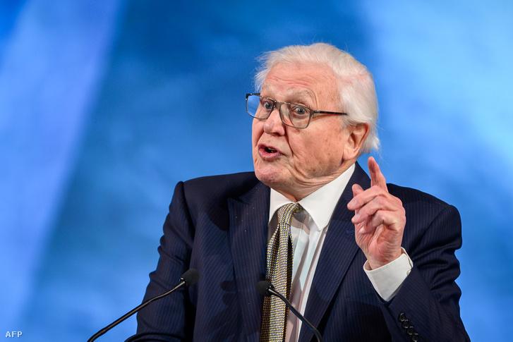 David Attenborough a davosi világgazdasági fórumon 2019. január 21-én