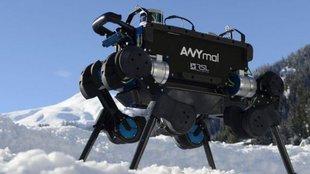 Mesterséges intelligencia segíti talpra állni a robotkutyát