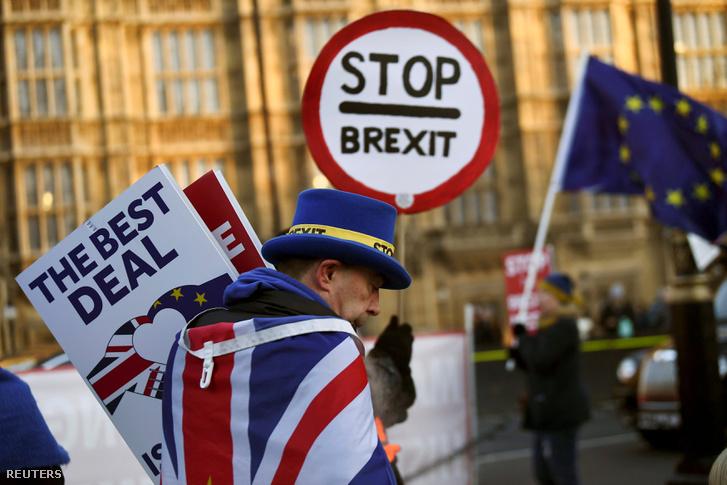 Brexit ellenes tüntetők a londoni parlament előtt 2019. január 17-én