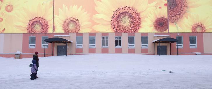 Napraforgókkal díszített panelház Norilszkban, ahol nemhogy napraforgók, de napsütés is alig van