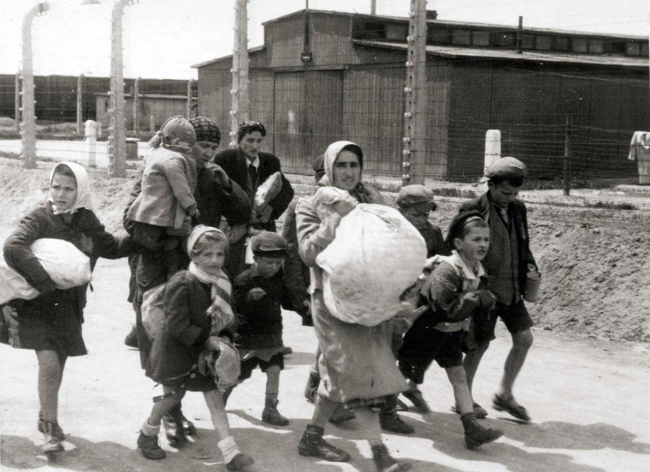A halálraítélteket sétára kényszerítették: el a barakkok mellett, végig a kerítés mentén. A végállomás: a krematóriumok. Ők ekkor még úgy tudták, zuhanyozni fognak.