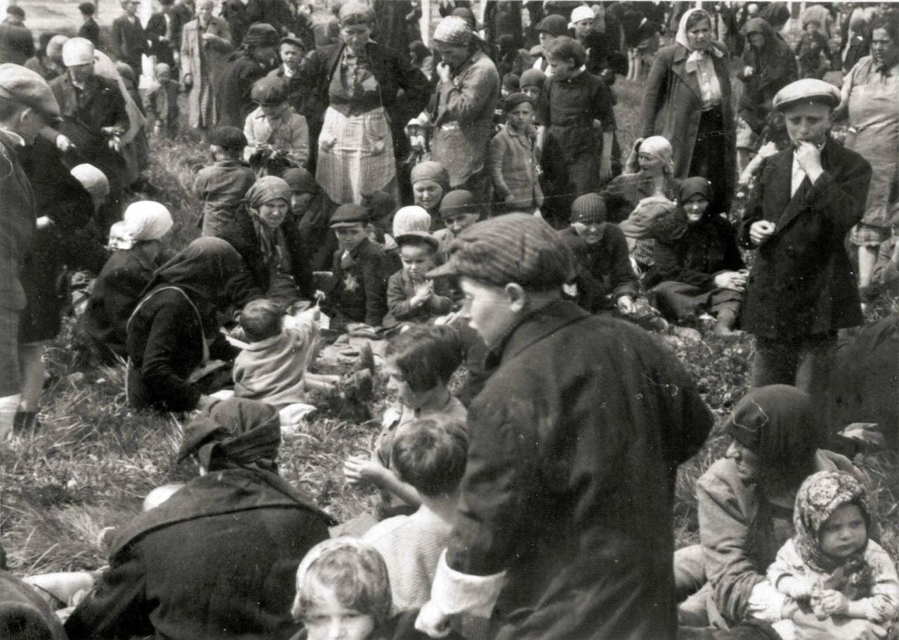 A krematóriumok vetkőzőkből, gázkamrákból és égetőkemencékből álltak. Ha épp telített volt a vetkőző, a gyanútlan halálraítélteknek a krematórium előtt, a nyírfaligetben kellett várakozniuk. A magyarul kellemes hangzású nyírfaliget vagy nyírfaerdő szavak jelentése németül Birkenau.