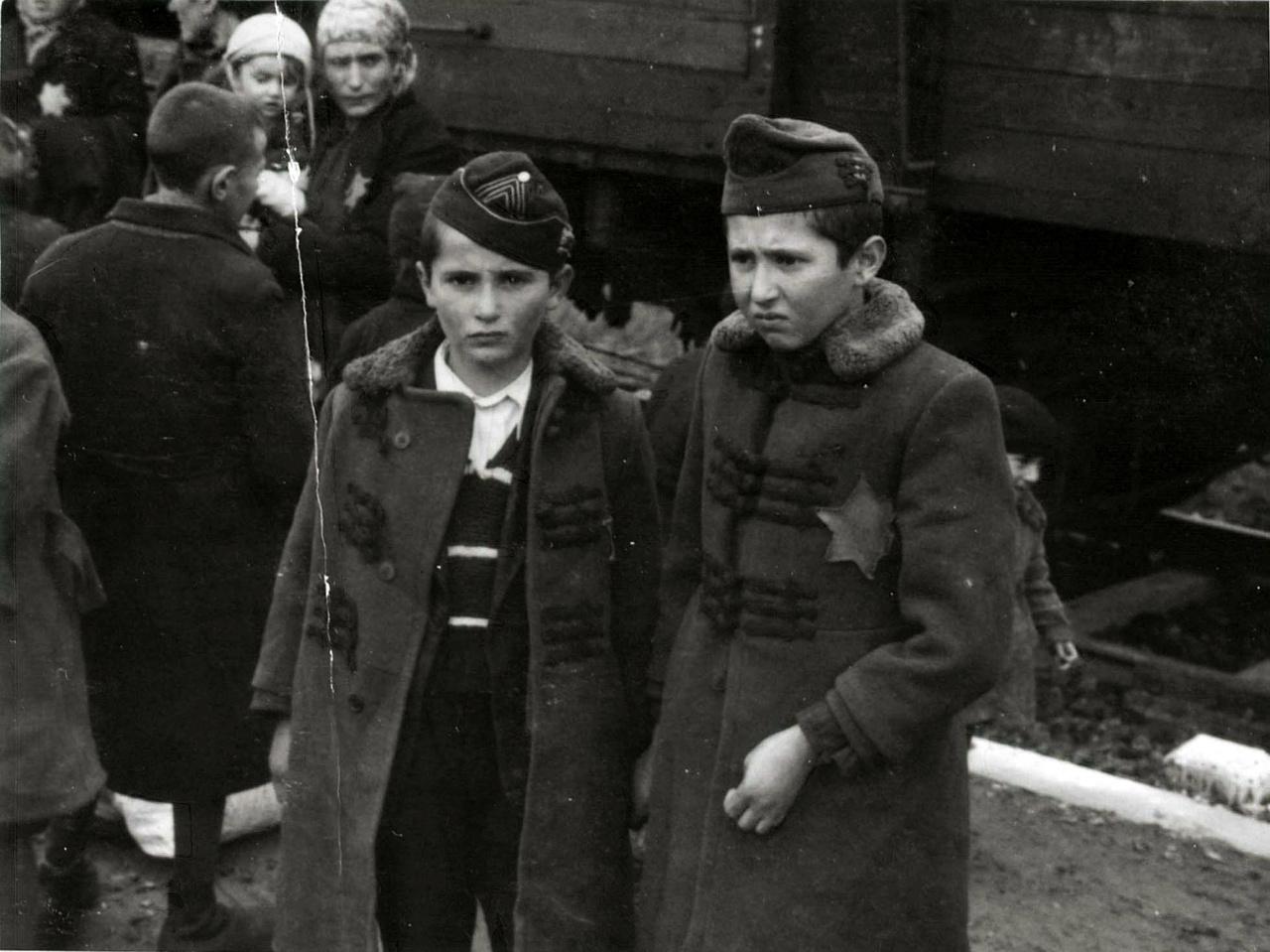 A képen látható két kisfiú Lili Jacob két öccse: a tizenegy éves Zril és a kilenc éves Zeilek. Megérkezésük után mindketten a gázkamrában haltak meg.