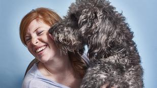 Így ismeri fel kutyák agya az emberi arcokat