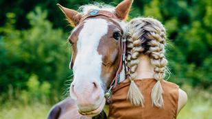 Így olvassa le a ló az arcodról, hogy milyen a kedved