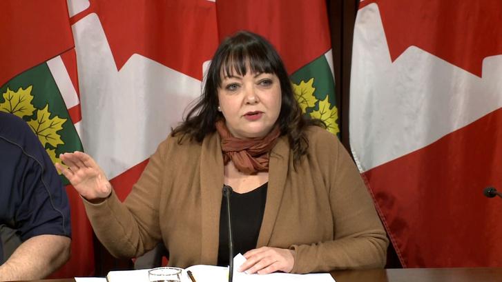 Natalie Mehra, az Ontario Health Coalition sajtótájékoztatóján 2019. január 22-én