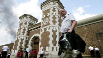 Egy angol férfi perelni akar, mert a börtönben kikészítették a patkányok