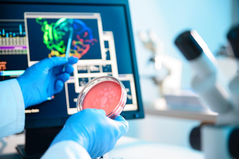 Az Alzheimer-kór és a szívbetegségek ellen is hatásos lehet: ezt kell tudni a NAC aminosavról