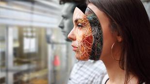 Mesterséges bőr vigyázhat ránk a nem is távoli jövőben