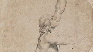 A holland királyi család nem múzeumnak adta, hanem elárvereztette a kivételes Rubens-rajzot