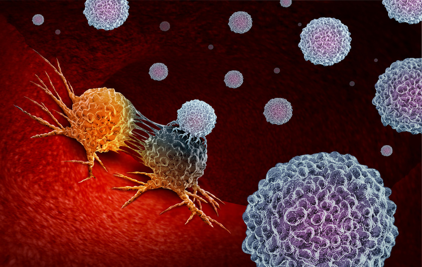 rak-immunterapia-sejtek