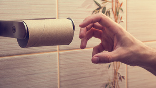 Óriási kamu a vécén lehúzható guriga