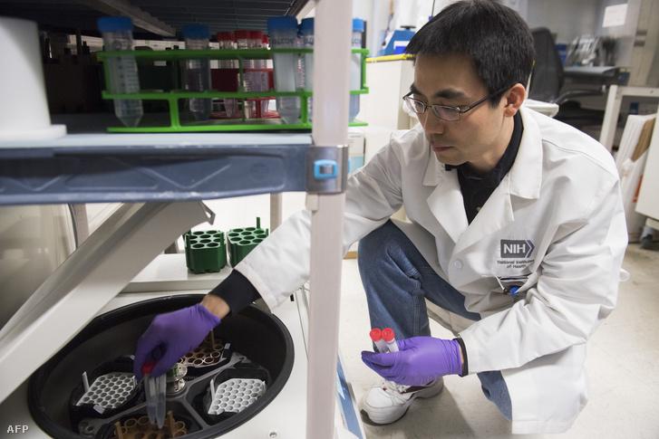 Dr. Benjamin Jin biológus a HPV és a rák immunoterápiájának lehetőségeit kutatja a marylandi Bethesda Kórházban