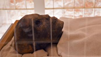 Közel tíz évnyi restaurálás után megtekinthető Tutanhamon arca és lábfeje