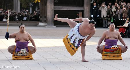 Aminisiki, Hakuhó és Kiokutenhó a Meidzsi Szentélyben