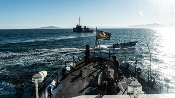 Húsz halászhajó támadt a delfinvédőkre