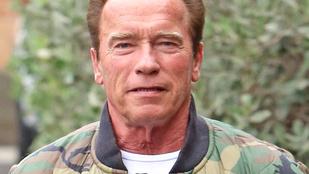 Vajna Tímea fánkja segít Arnold Schwarzeneggernek abban, hogy kiegyensúlyozott legyen