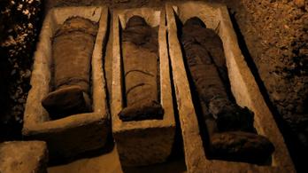 Közel 40 múmia került elő egy egyiptomi sírkamrából