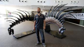 Új dinoszauruszfajt fedeztek fel Argentínában