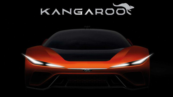 gfg kangaroo tsr