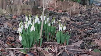 A hétvégéig várni kell a tavaszra