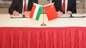 Gyanúsan fiatal cég léphet a kereskedőházak helyébe Kínában