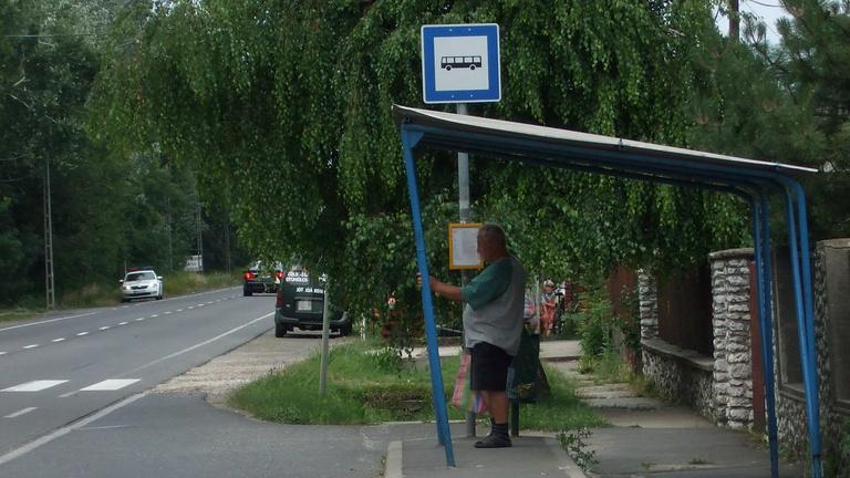 Egy szikszói férfi harca az utcájába telepített szabálytalan buszmegállóval